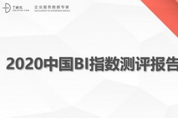 T研究|2020中国BI指数测评报告