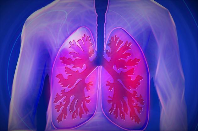 你的肺里有真菌