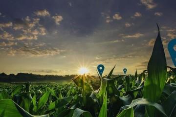 从太空到田间悄然进行中的农业数字革命